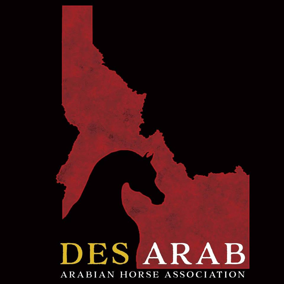 Des Arab Arabian Horse Association